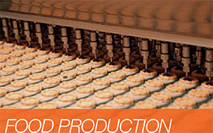 Rubber mouldings for the food industry